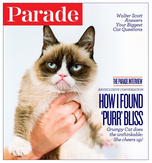 grumpycat_cover